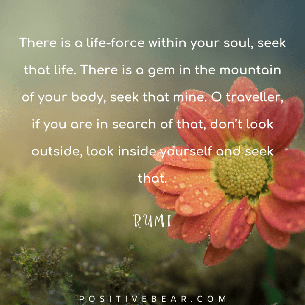 20 Rumi Quotes TO Make You Go Deep